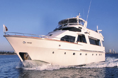 fishing wedding cakes sydney harbour wedding cruises on sydney harbour with day by day charters 14292